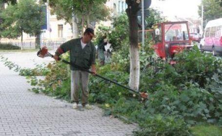 Vizualizati imaginile din articolul: Principalele acțiuni ce se desfășoară în perioada 21 - 25 martie 2011 în parcurile și zonele verzi