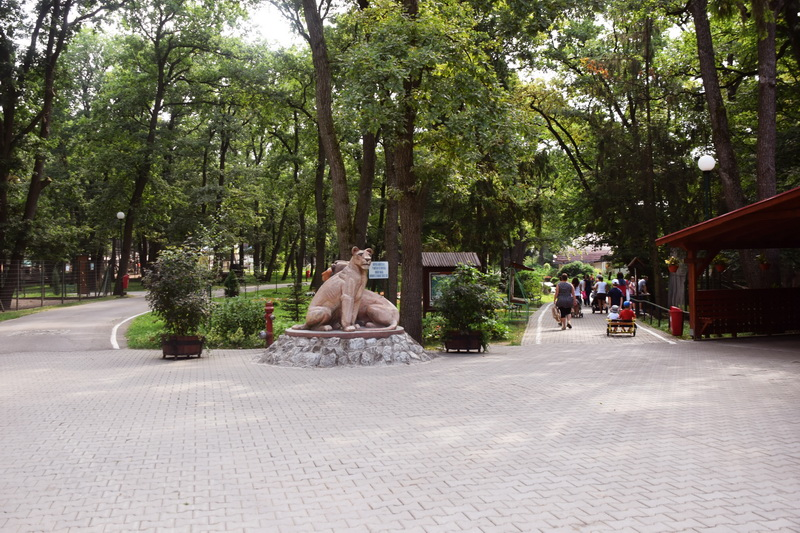 Vizualizati imaginile din articolul: Noapte de vis la Zoo Târgu Mureș!