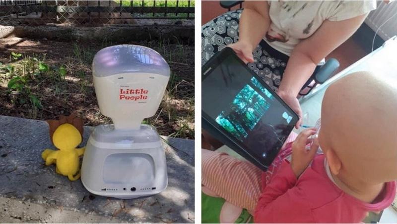 Vizualizati imaginile din articolul: Experiență unică pentru micuții internați la Hemato- Oncologie Pediatrică din Târgu Mureș: un tur virtual la  ZOO!