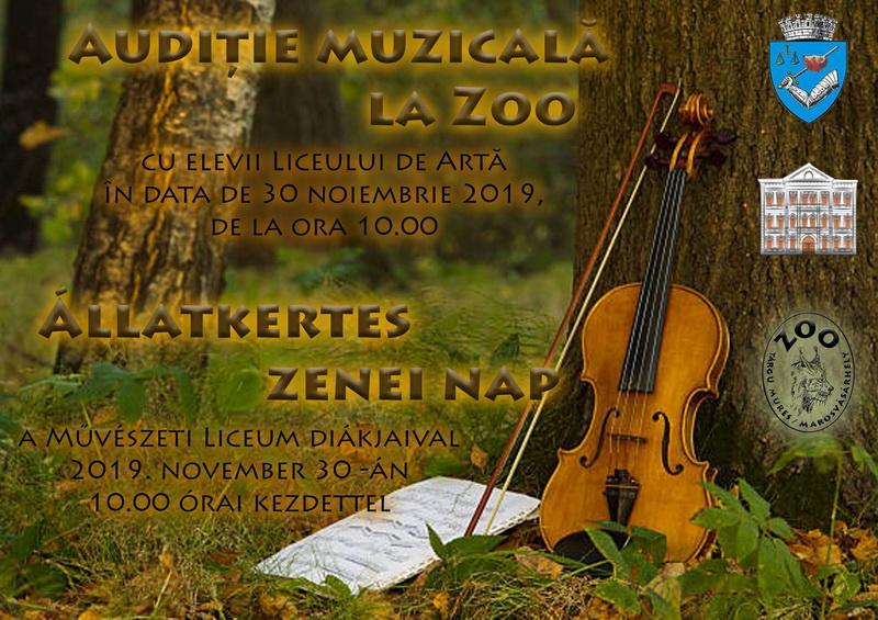 Vizualizati imaginile din articolul: Concert inedit, în spațiu neconvențional! Zoo Târgu Mureș găzduiește muzica marilor compozitori  interpretată de elevi ai Liceului de Artă din oraș.