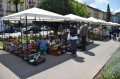 Primăria municipiului Târgu Mureş oferă spre vânzare flori cu prilejul sărbătorilor de primăvară